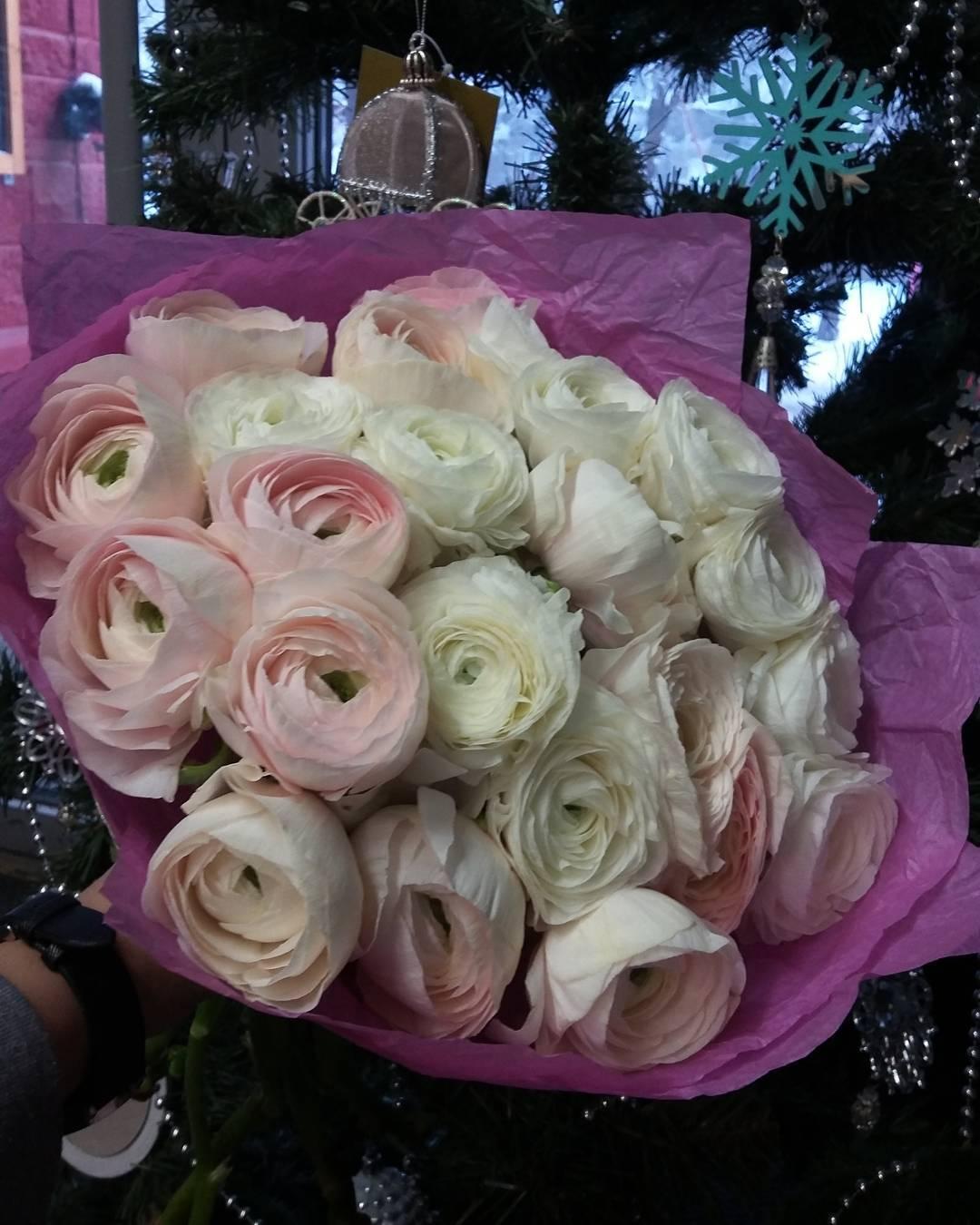 Они прекрасны???? Ранункулусы в наличии. Звони и заказывай +79272365977#цветыуфадоставка#доставкацветовуфа#цветыуфа#ранункулусы#уфа