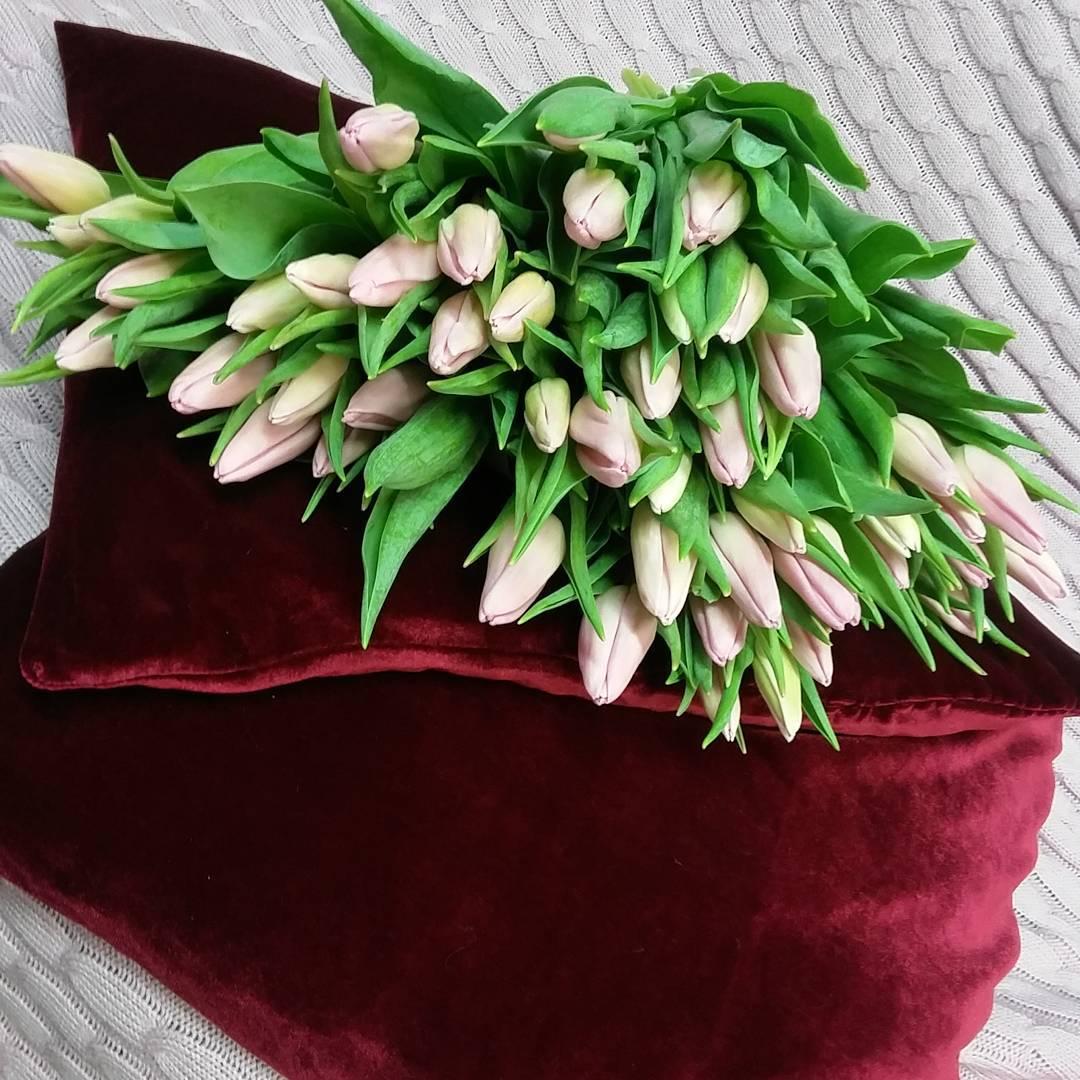 Запах Весны. В наличии????????????. Уже принимаем заказы на 14 Февраля????????????????????????Ул. Ветошникова д.131. ☎(347)266-59-77 ????+7 927 236 59 77. Сайт www.bloomboom.ru#flowers#доставкацветовуфа#цветыуфа#цветы#уфа